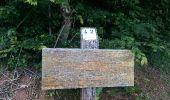 Randonnée Marche RONCHAMP - le tour par la chapelle Ronchamp - Photo 4