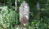Trail Walk RONCHAMP - le tour par la chapelle Ronchamp - Photo 3