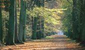 Randonnée Marche VILLERS-COTTERETS - Le Parc de Monplaisir - Photo 3