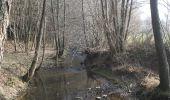 Trail Walk Erezée - Soupirs - Photo 12