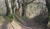 Trail Walk Erezée - Soupirs - Photo 4