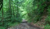 Randonnée Marche SAINT-PAUL-DE-VARCES - col de l'Eperrimont - Photo 4