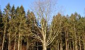 Randonnée Marche Ferrières - De Ferrières à Harzé - Photo 1