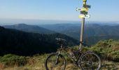 Randonnée V.T.T. JOANNAS - roubreau col de bauzon  - Photo 16