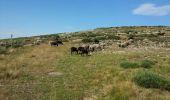 Randonnée V.T.T. JOANNAS - roubreau col de bauzon  - Photo 10