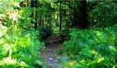 Randonnée Marche LONGPONT - en forêt de Retz_18_Longpont_etangs de la Ramee_AR - Photo 18