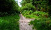 Randonnée Marche LONGPONT - en forêt de Retz_18_Longpont_etangs de la Ramee_AR - Photo 64