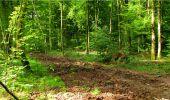 Randonnée Marche LONGPONT - en forêt de Retz_18_Longpont_etangs de la Ramee_AR - Photo 53