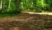 Randonnée Marche LONGPONT - en forêt de Retz_18_Longpont_etangs de la Ramee_AR - Photo 54