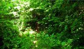 Randonnée Marche LONGPONT - en forêt de Retz_18_Longpont_etangs de la Ramee_AR - Photo 51