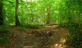 Randonnée Marche LONGPONT - en forêt de Retz_18_Longpont_etangs de la Ramee_AR - Photo 80