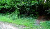 Randonnée Marche LONGPONT - en forêt de Retz_18_Longpont_etangs de la Ramee_AR - Photo 45