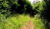 Randonnée Marche LONGPONT - en forêt de Retz_18_Longpont_etangs de la Ramee_AR - Photo 84