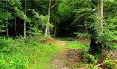 Randonnée Marche LONGPONT - en forêt de Retz_18_Longpont_etangs de la Ramee_AR - Photo 74
