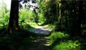 Randonnée Marche LONGPONT - en forêt de Retz_18_Longpont_etangs de la Ramee_AR - Photo 4