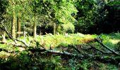 Randonnée Marche LONGPONT - en forêt de Retz_18_Longpont_etangs de la Ramee_AR - Photo 19