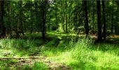 Randonnée Marche LONGPONT - en forêt de Retz_18_Longpont_etangs de la Ramee_AR - Photo 58