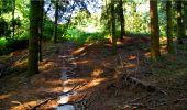 Randonnée Marche LONGPONT - en forêt de Retz_18_Longpont_etangs de la Ramee_AR - Photo 14
