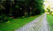 Randonnée Marche LONGPONT - en forêt de Retz_18_Longpont_etangs de la Ramee_AR - Photo 13