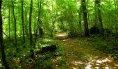 Randonnée Marche LONGPONT - en forêt de Retz_18_Longpont_etangs de la Ramee_AR - Photo 78