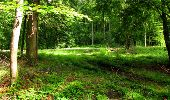 Randonnée Marche LONGPONT - en forêt de Retz_18_Longpont_etangs de la Ramee_AR - Photo 60