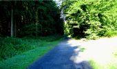 Randonnée Marche LONGPONT - en forêt de Retz_18_Longpont_etangs de la Ramee_AR - Photo 9