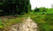 Randonnée Marche LONGPONT - en forêt de Retz_18_Longpont_etangs de la Ramee_AR - Photo 73