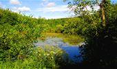 Randonnée Marche LONGPONT - en forêt de Retz_18_Longpont_etangs de la Ramee_AR - Photo 37