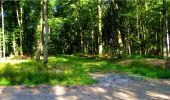 Randonnée Marche LONGPONT - en forêt de Retz_18_Longpont_etangs de la Ramee_AR - Photo 28