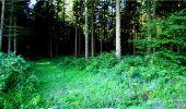 Randonnée Marche LONGPONT - en forêt de Retz_18_Longpont_etangs de la Ramee_AR - Photo 10