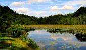 Randonnée Marche LONGPONT - en forêt de Retz_18_Longpont_etangs de la Ramee_AR - Photo 40