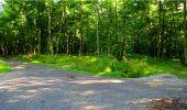 Randonnée Marche LONGPONT - en forêt de Retz_18_Longpont_etangs de la Ramee_AR - Photo 31