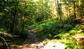 Randonnée Marche LONGPONT - en forêt de Retz_18_Longpont_etangs de la Ramee_AR - Photo 15