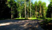 Randonnée Marche LONGPONT - en forêt de Retz_18_Longpont_etangs de la Ramee_AR - Photo 29