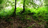 Randonnée Marche LONGPONT - en forêt de Retz_18_Longpont_etangs de la Ramee_AR - Photo 63