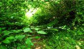 Randonnée Marche LONGPONT - en forêt de Retz_18_Longpont_etangs de la Ramee_AR - Photo 50