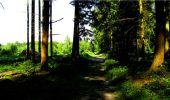 Randonnée Marche LONGPONT - en forêt de Retz_18_Longpont_etangs de la Ramee_AR - Photo 5