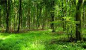 Randonnée Marche LONGPONT - en forêt de Retz_18_Longpont_etangs de la Ramee_AR - Photo 52