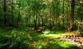 Randonnée Marche LONGPONT - en forêt de Retz_18_Longpont_etangs de la Ramee_AR - Photo 16