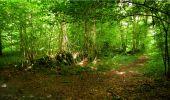 Randonnée Marche LONGPONT - en forêt de Retz_18_Longpont_etangs de la Ramee_AR - Photo 75