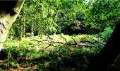 Randonnée Marche LONGPONT - en forêt de Retz_18_Longpont_etangs de la Ramee_AR - Photo 20