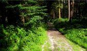 Randonnée Marche LONGPONT - en forêt de Retz_18_Longpont_etangs de la Ramee_AR - Photo 69