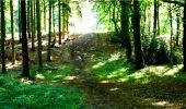 Randonnée Marche LONGPONT - en forêt de Retz_18_Longpont_etangs de la Ramee_AR - Photo 17