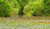 Randonnée Marche LONGPONT - en forêt de Retz_18_Longpont_etangs de la Ramee_AR - Photo 39