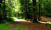 Randonnée Marche LONGPONT - en forêt de Retz_18_Longpont_etangs de la Ramee_AR - Photo 70