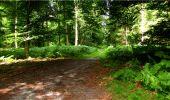 Randonnée Marche LONGPONT - en forêt de Retz_18_Longpont_etangs de la Ramee_AR - Photo 67