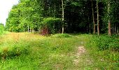 Randonnée Marche LONGPONT - en forêt de Retz_18_Longpont_etangs de la Ramee_AR - Photo 72