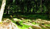 Randonnée Marche LONGPONT - en forêt de Retz_18_Longpont_etangs de la Ramee_AR - Photo 34