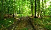 Randonnée Marche LONGPONT - en forêt de Retz_18_Longpont_etangs de la Ramee_AR - Photo 47