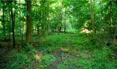 Randonnée Marche LONGPONT - en forêt de Retz_18_Longpont_etangs de la Ramee_AR - Photo 27